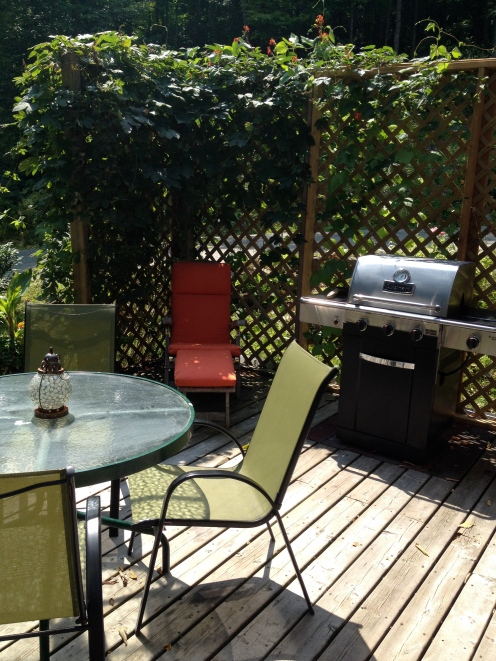 The semi-private deck with BBQ