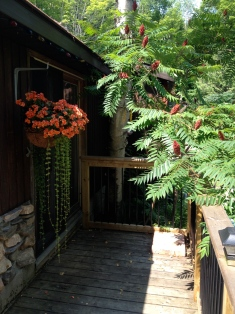 Front patio entrance